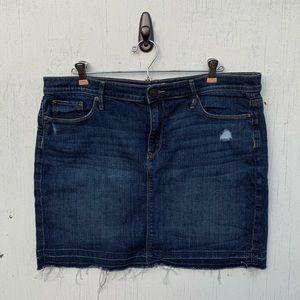 Ann Taylor LOFT Blue Denim Jean Skirt